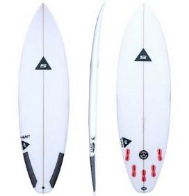 Surfboard Simon Anderson Varmit