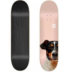 Skateboard Jart Friends 8,125″